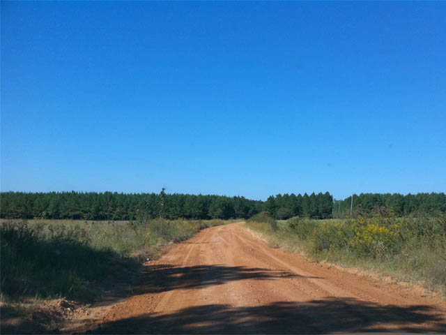 Dirt road